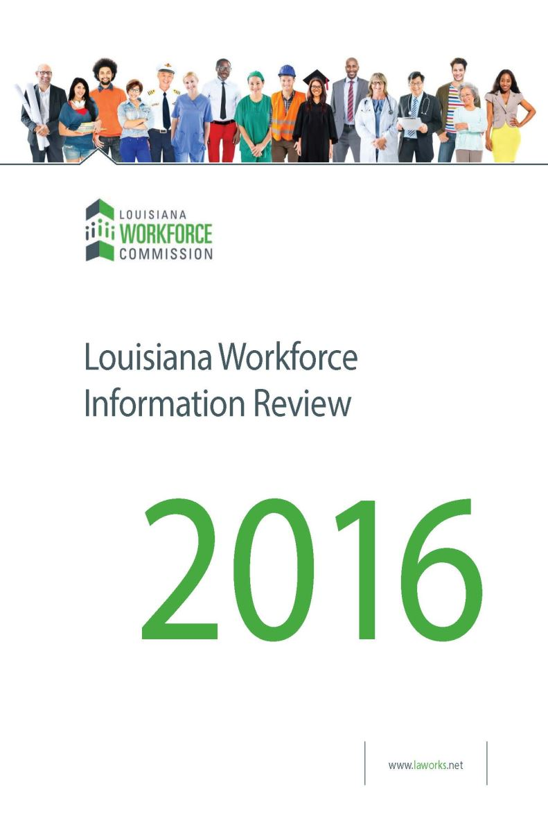 Workforce Information Review 2013